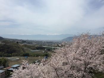 daizenjiIMG_2869.JPG